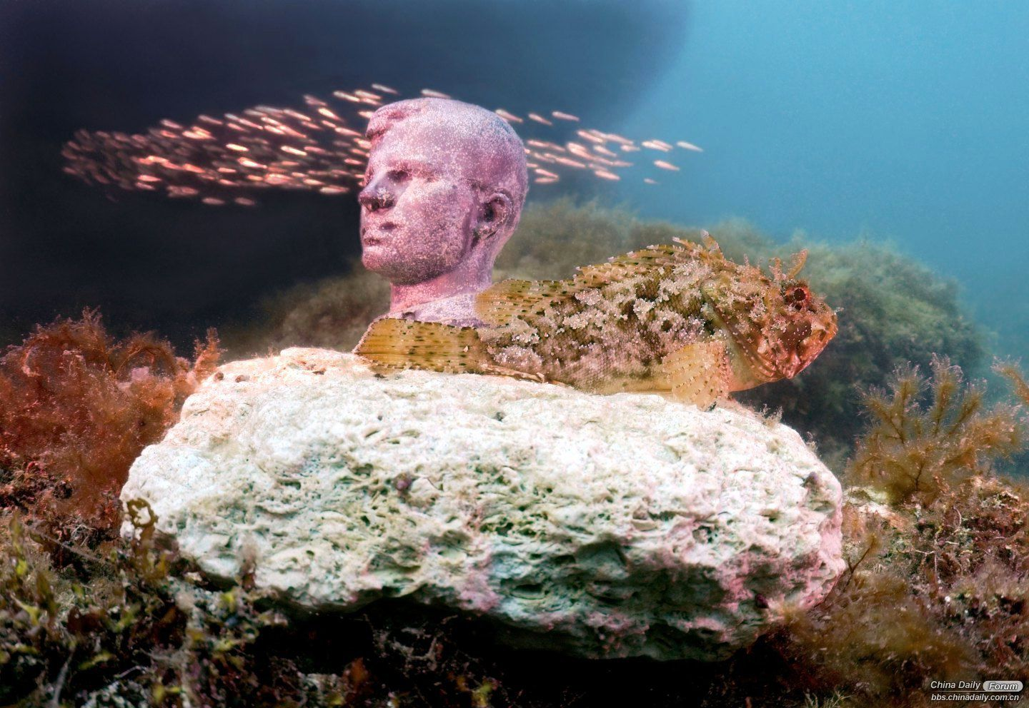 underwater leaders travel daily forum vladimir lenin