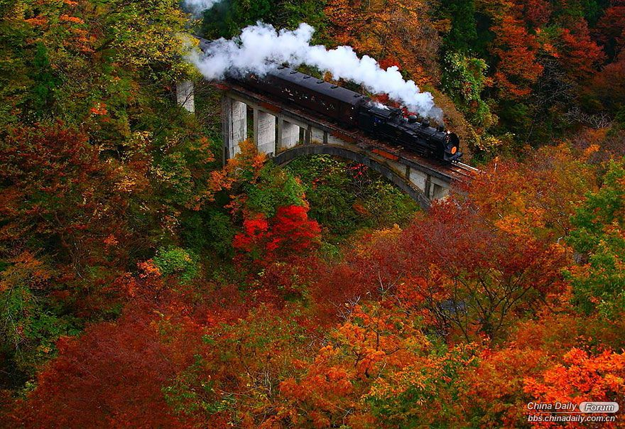 amazing-places-japan-22-57512c57b28a9__880.jpg