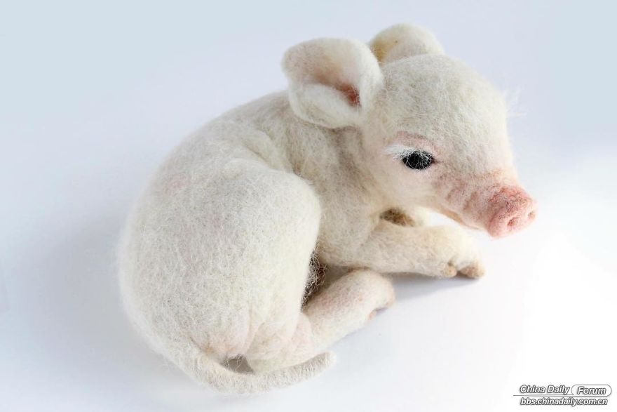 I-spend-a-lot-of-time-sculpting-realistic-looking-animals-out-of-wool-fiber-5b97.jpg